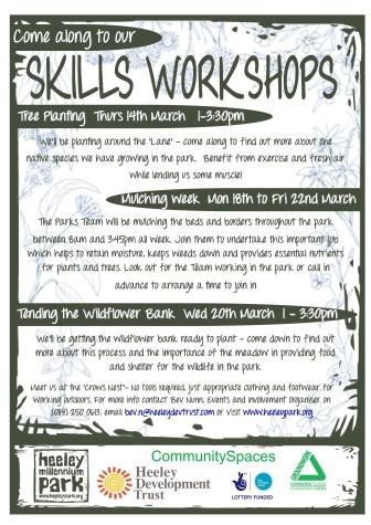 Skills Workshops March 2013