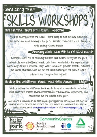 Skills Workshops March 2013