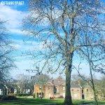 Meersbrook_Hall